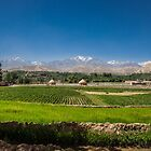 A view of Bamyan, Afghanistan by David R. Anderson