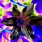 Psychedelic flower by Paulmayfield