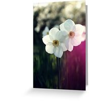 In the meadow... Greeting Card
