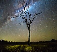 Flanagan Reserve Milky Way by kmatm