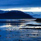 höfn, iceland by gary roberts