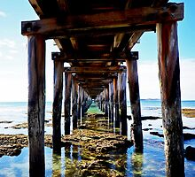 From Under The Pier by Tom Blanche