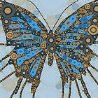 Butterfly 1 by rjkraska