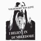 Dumbledore's Army is here by bertadp
