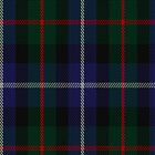 02310 Dalmeny #1 Clan/Family Tartan Fabric Print Iphone Case by Detnecs2013
