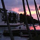 Bermuda - Sunset by islandphotoguy