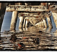 Under the Jetty by Rob Kelly