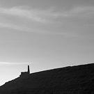 """"""" Forgotten Tin Mine , Porthtowan """" by Richard Couchman"""