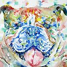 BULLDOG - watercolor portrait by lautir
