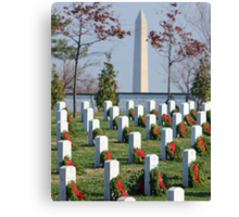 Somber View Canvas Print