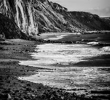 Jurassic Coast by Michael Carter
