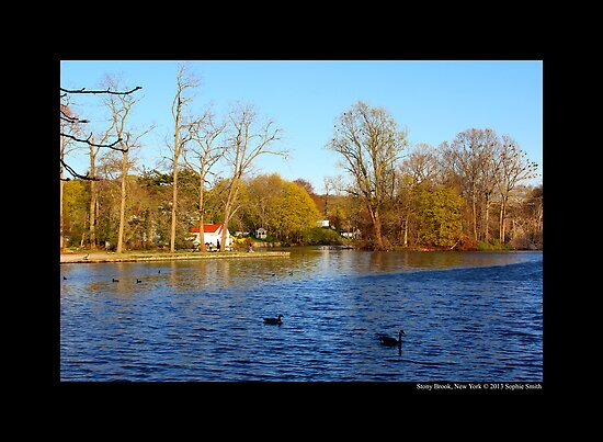 Evening At Grist Mill Pond - Stony Brook, New York  by © Sophie W. Smith