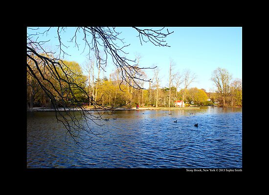 Afternoon At Grist Mill Pond - Stony Brook, New York  by © Sophie W. Smith
