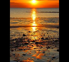 West Meadow Beach Golden Sunset - Stony Brook, New York  by © Sophie W. Smith