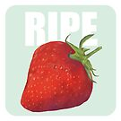 Ripe Strawberry by jenyfurr