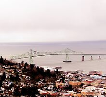 view from the Astoria Column Astoria–Megler Bridge 2 by Dawna Morton