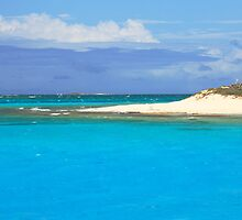 Sandy Island Beach and Turquoise Sea  by Roupen  Baker