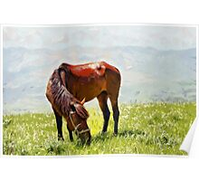 Horse at grass painting Poster