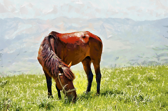 Horse at grass painting by Magomed Magomedagaev