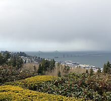 view from the Astoria Column Astoria–Megler Bridge 3 by Dawna Morton