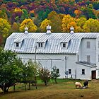 Dutch Barn in West Virginia by vivsworld