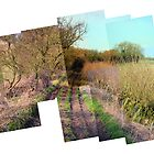 www.lizgarnett.com/valley.htm - March Montage by Liz Garnett
