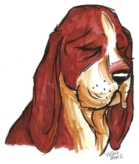 Brush Breeds-Basset Hound by Alexa H.J.