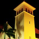 Church and Palm Tree at Night by Roupen  Baker