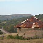 African Hut 1 by Eldon Mason