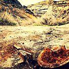 Abandon Mining Rail by Johnathan Perreal