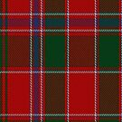 02315 Dalziel #1Clan/Family Tartan Fabric Print Iphone Cae by Detnecs2013