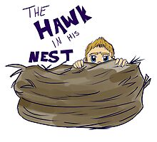 Hawk in His Nest by AlyKatStark