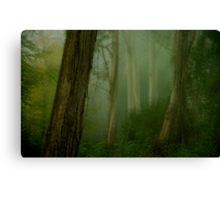 Bush Magic - Mount Wilson - NSW  - THE HDR Experience Canvas Print
