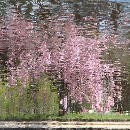 Pink Breeze by KUJO-Photo