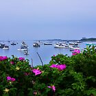 Cape Porpoise Harbor by quiltmaker
