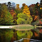 Changing Seasons - West Virginia by vivsworld