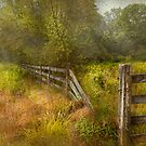 Country - Landscape - Lazy meadows by Mike  Savad