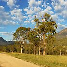 Mt Barney, South-East Queensland, Australia by Michael Boniwell