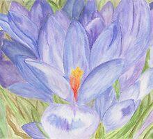 Spring Crocus by Kendra Cook