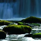 Spring water by Rhonda  Thomassen