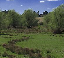 Woodbridge Marshes by wiggyofipswich