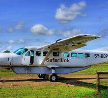 Safari Link - From Nairobi to Masai Mara by Charuhas  Images