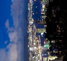 Hong Kong harbour and Kowloon peninsula by night by Jamie Parker