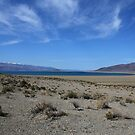 Pyramid Lake,Nevada,USA by Anthony & Nancy  Leake
