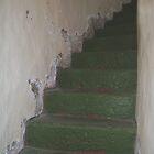 Lighthouse Stairs by Eldon Mason