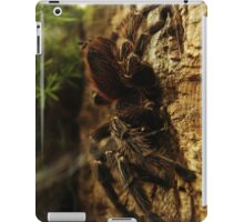 Arachnid in Darkness iPad Case/Skin