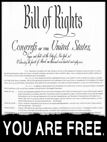 Bill of Rights: You Are Free. by truthstreamnews
