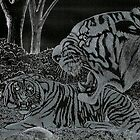 Tigers in the Night by fenrisulfsson