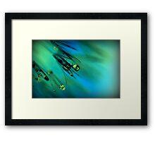 Dandelion Whispers Framed Print