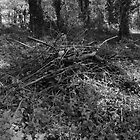 Pile of Sticks B&amp;W by Artberry